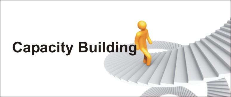 capacity_building