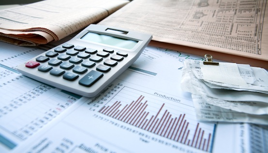 Accountants as Instruments of Profitability and Growth in Business