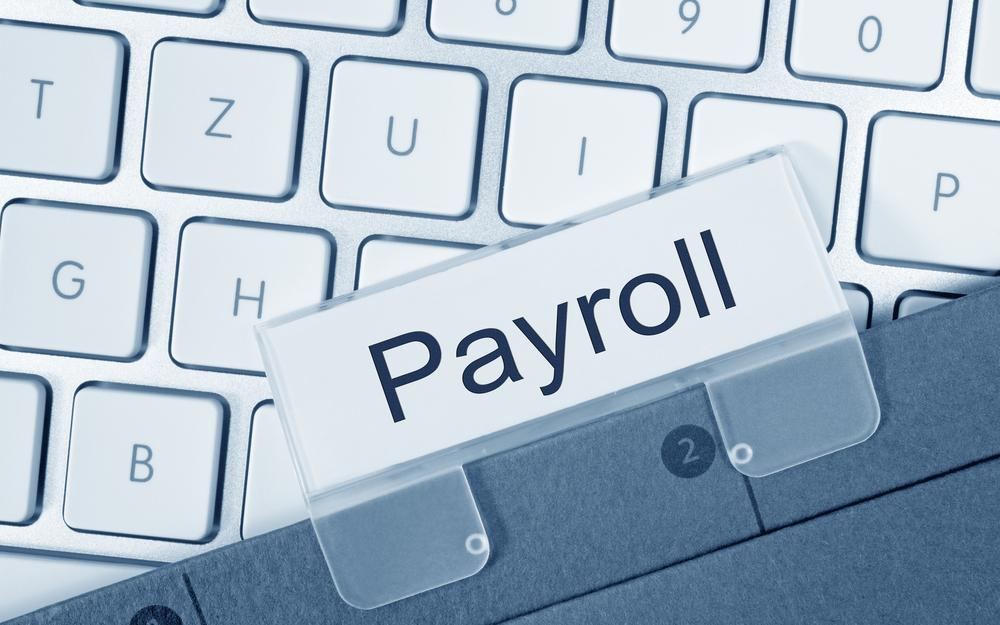 What Does a Payroll Analyst Do?