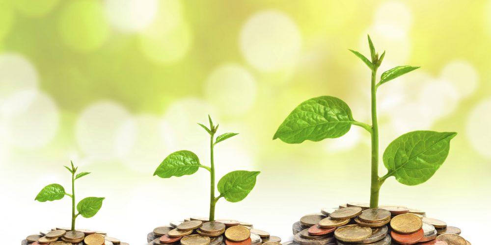 NIRSAL, Union Bank Launch N10bn Agric Financing Partnership