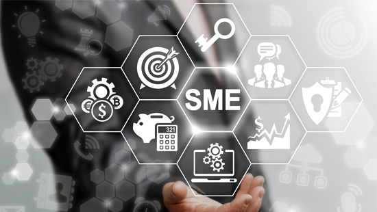 How to Attract Funding from Banks, Equity Investors and Donors: A Beginner's Guide for SMEs